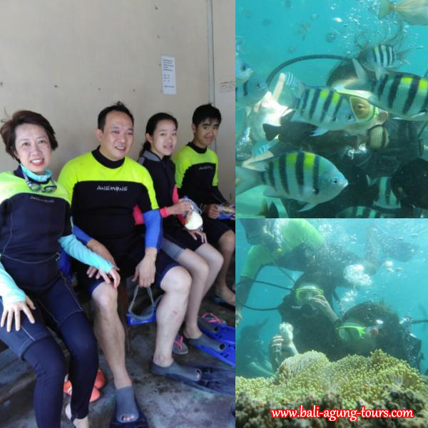 Fun Day Underwater/ Bali Diving with Peter Chiu and FAM from HK
