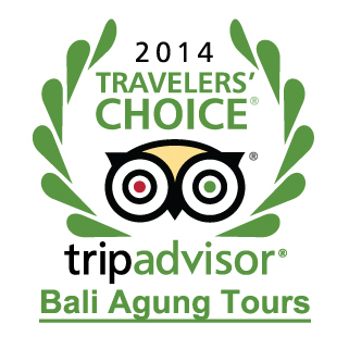 Bali Private Tours Traveler Choice