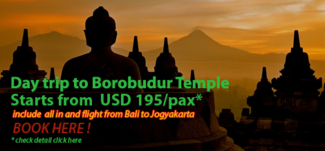 Day Trip To Borobudur Temple Starts From USD 195/pax
